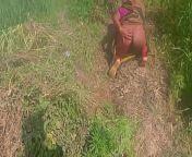 गेहूँ के खेत मे रगड़ के चोद देहाती विडियो from dehati khet garden mms hind